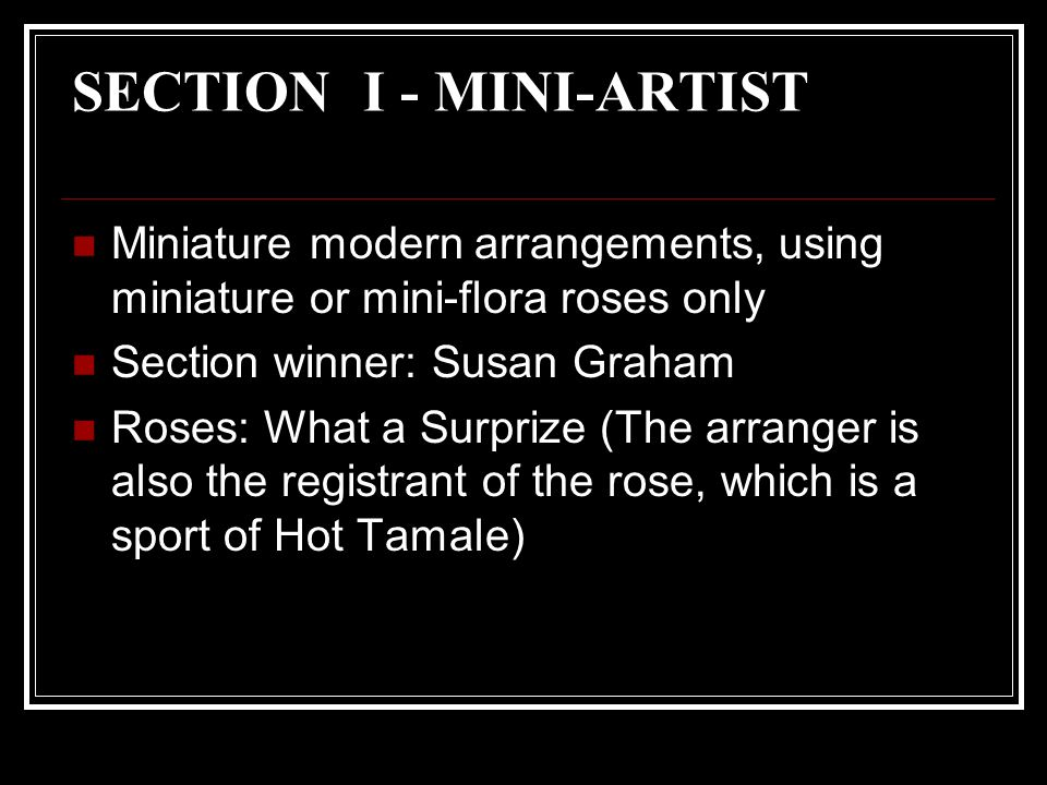 SECTION I - MINI-ARTIST Miniature modern arrangements, using miniature or mini-flora roses only Section winner: Susan Graham Roses: What a Surprize (The arranger is also the registrant of the rose, which is a sport of Hot Tamale)