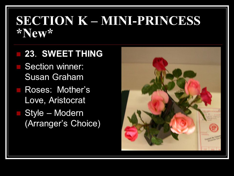 SECTION K – MINI-PRINCESS *New* 23.