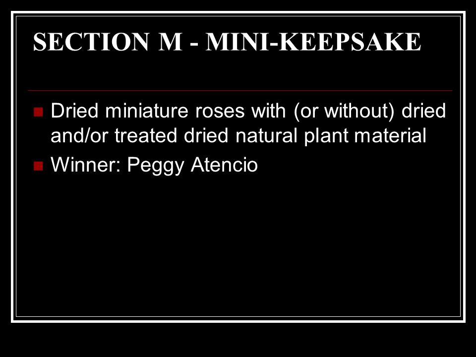 SECTION M - MINI-KEEPSAKE Dried miniature roses with (or without) dried and/or treated dried natural plant material Winner: Peggy Atencio
