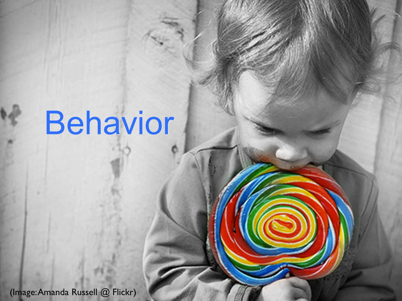 Behavior (Image: Amanda Flickr)