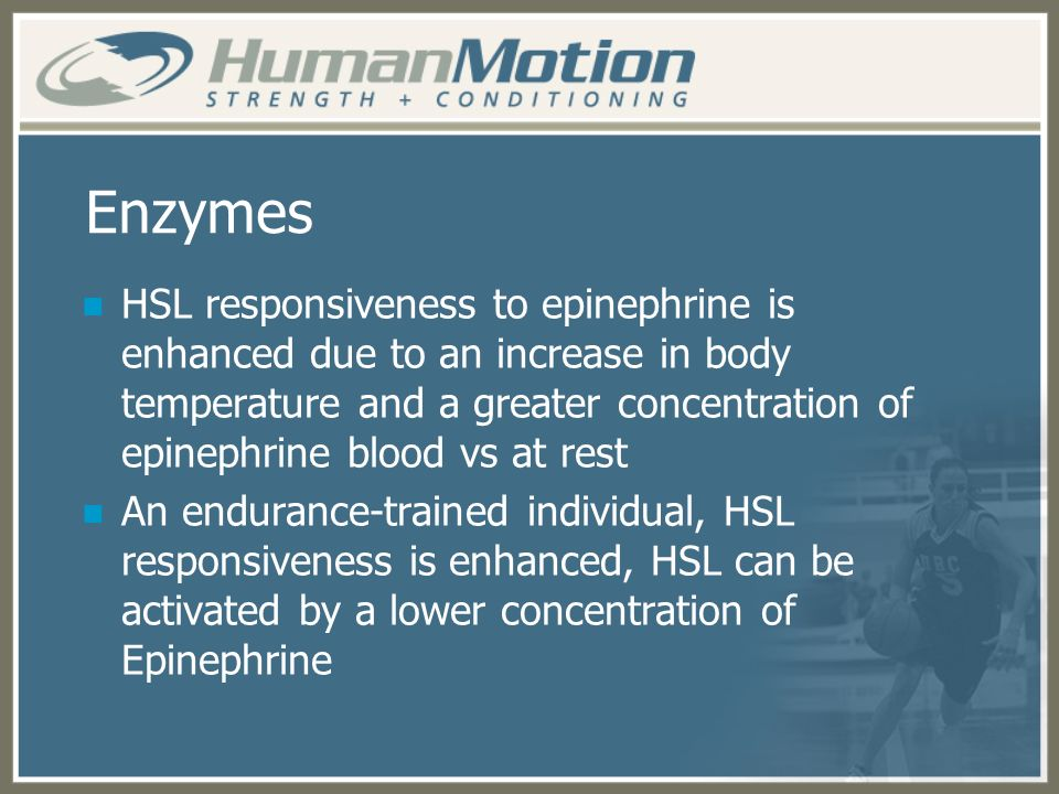 Enzymes HSL responsiveness to epinephrine is enhanced due to an increase in body temperature and a greater concentration of epinephrine blood vs at re