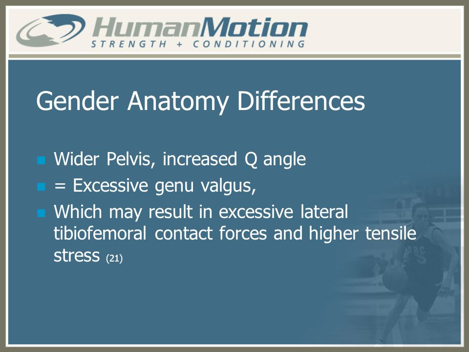 Gender Anatomy Differences Wider Pelvis, increased Q angle = Excessive genu valgus, Which may result in excessive lateral tibiofemoral contact forces
