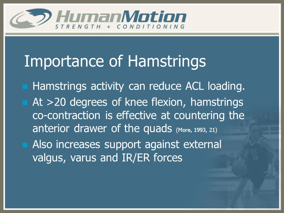 Importance of Hamstrings Hamstrings activity can reduce ACL loading. At >20 degrees of knee flexion, hamstrings co-contraction is effective at counter