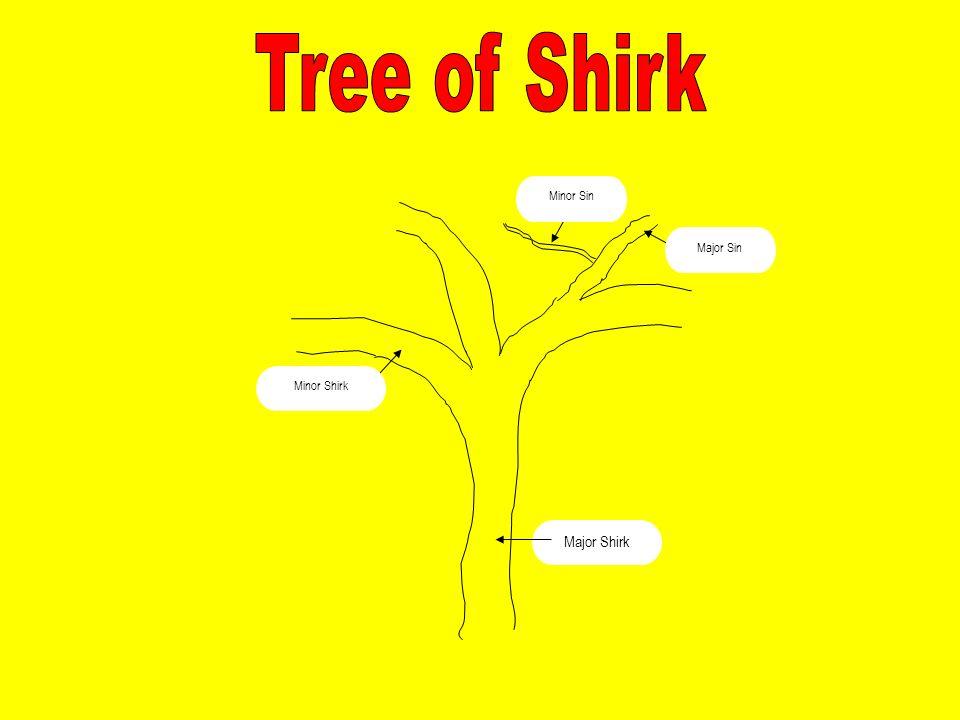 Major Shirk Minor Sin Minor Shirk Major Sin