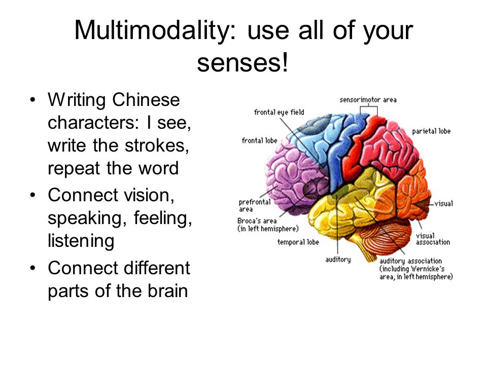 Multimodality: use all of your senses.
