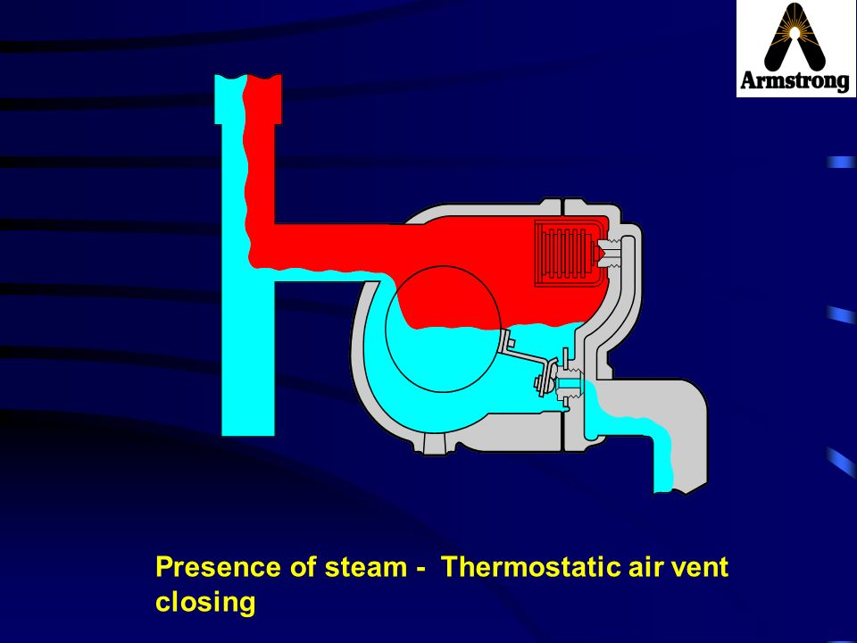 Presence of steam - Thermostatic air vent closing