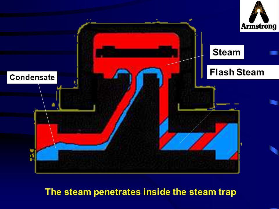 Steam Condensate Flash Steam The steam penetrates inside the steam trap