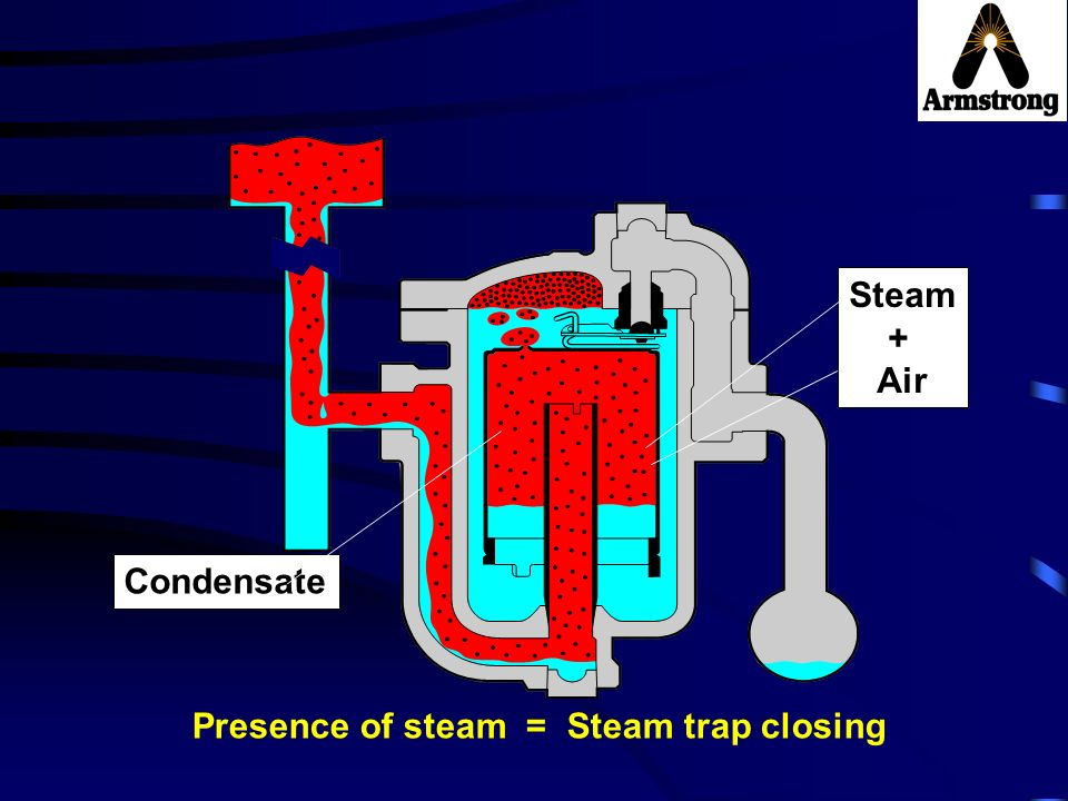 Steam + Air Condensate Presence of steam = Steam trap closing