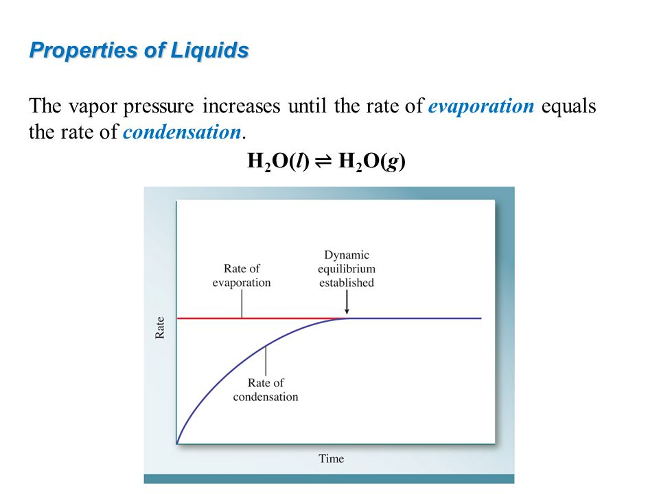 The vapor pressure increases until the rate of evaporation equals the rate of condensation. Properties of Liquids H 2 O(l) H 2 O(g)