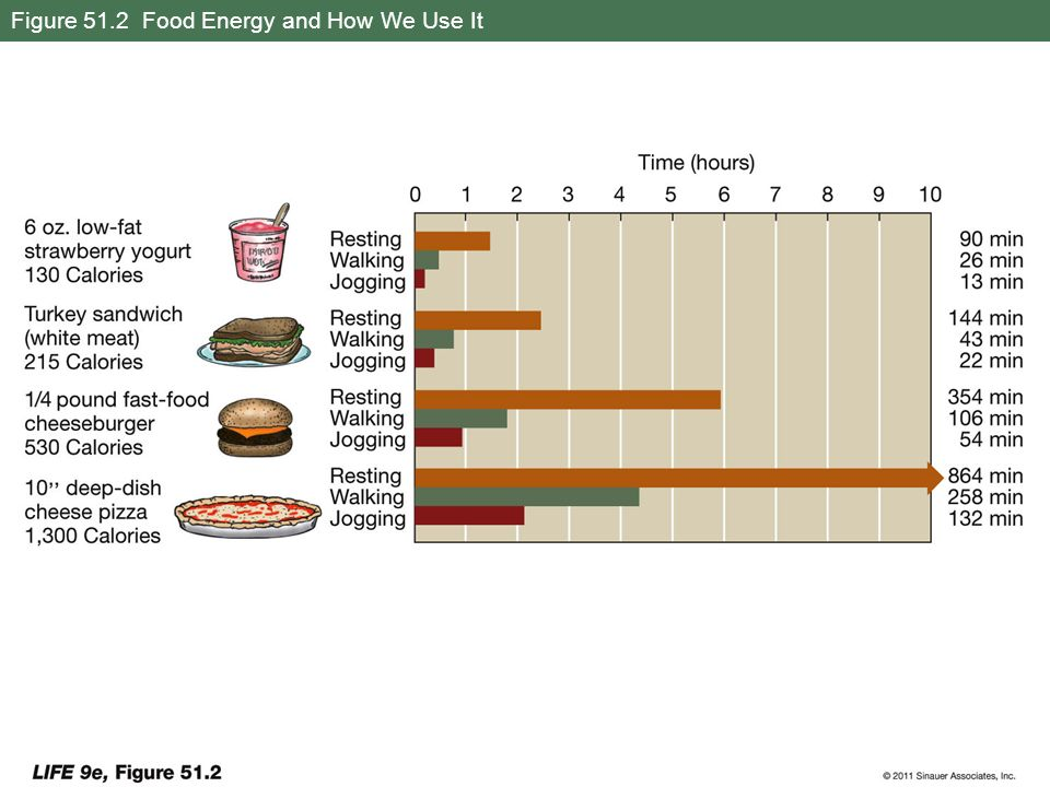 Figure 51.2 Food Energy and How We Use It