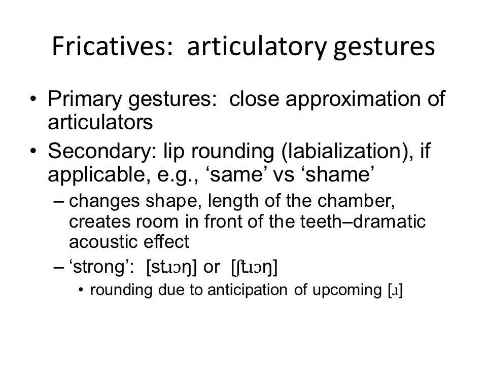 Fricatives: articulatory gestures Primary gestures: close approximation of articulators Secondary: lip rounding (labialization), if applicable, e.g.,