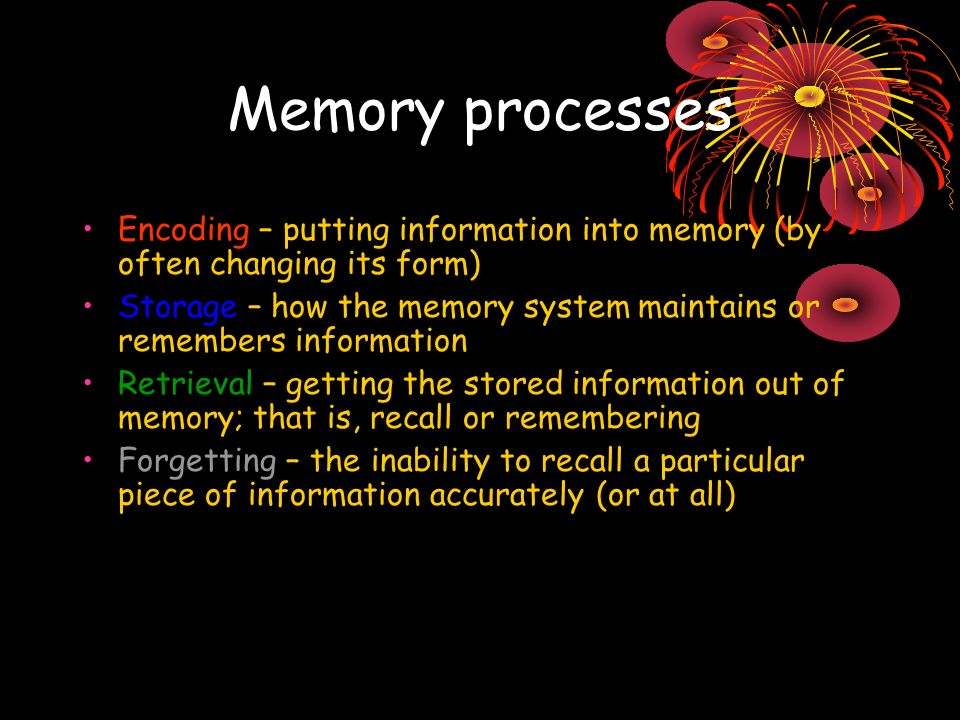 Memory processes Encoding – putting information into memory (by often changing its form) Storage – how the memory system maintains or remembers information Retrieval – getting the stored information out of memory; that is, recall or remembering Forgetting – the inability to recall a particular piece of information accurately (or at all)