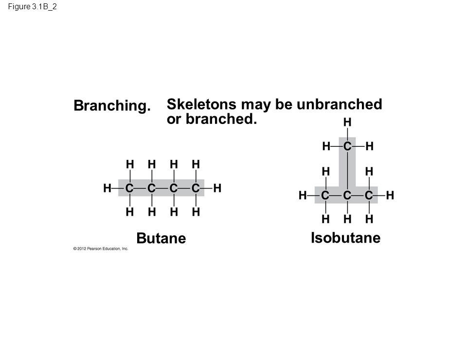 Figure 3.1B_2 Butane Isobutane Branching. Skeletons may be unbranched or branched.
