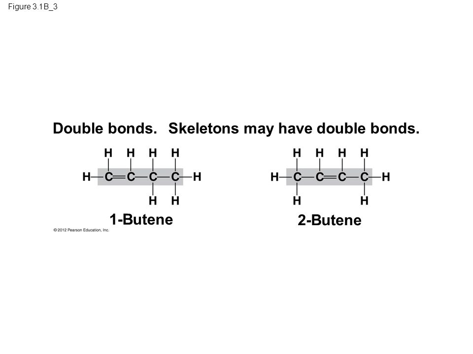 Figure 3.1B_3 Double bonds. 1-Butene 2-Butene Skeletons may have double bonds.