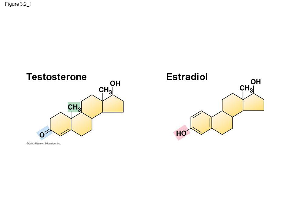 Figure 3.2_1 TestosteroneEstradiol