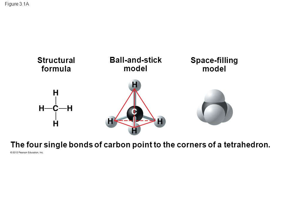 Figure 3.1A Structural formula Ball-and-stick model Space-filling model The four single bonds of carbon point to the corners of a tetrahedron.