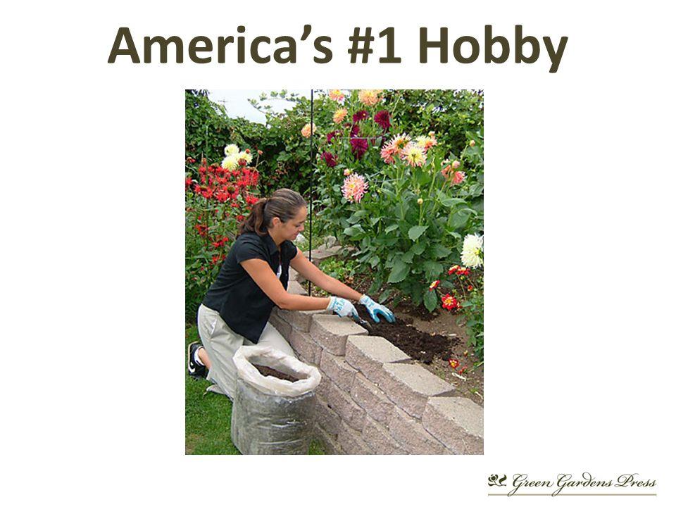 Americas #1 Hobby