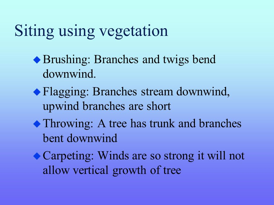 Siting using vegetation u Brushing: Branches and twigs bend downwind.