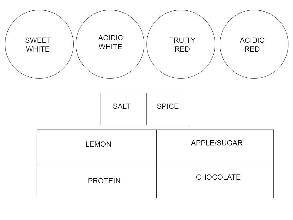 SALTSPICE LEMON APPLE/SUGAR PROTEIN CHOCOLATE SWEET WHITE ACIDIC WHITE FRUITY RED ACIDIC RED