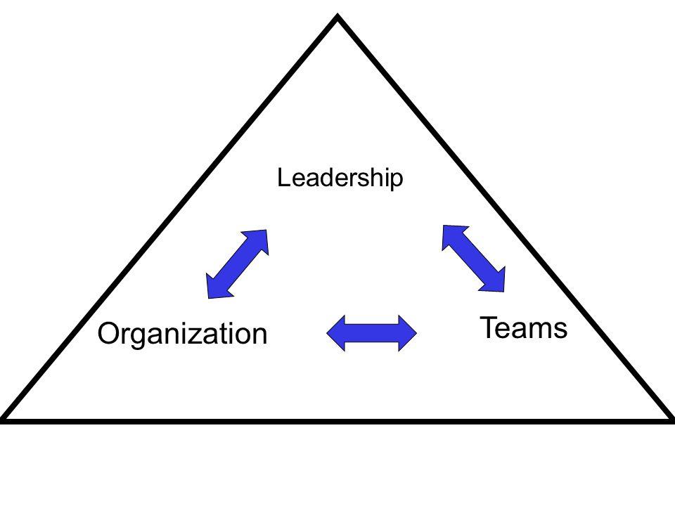 Leadership Teams Organization