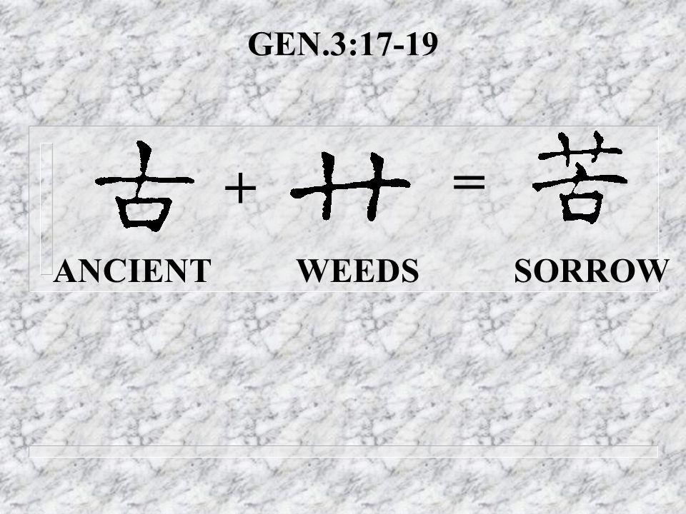 GEN.3:17-19 ANCIENT WEEDS SORROW + =