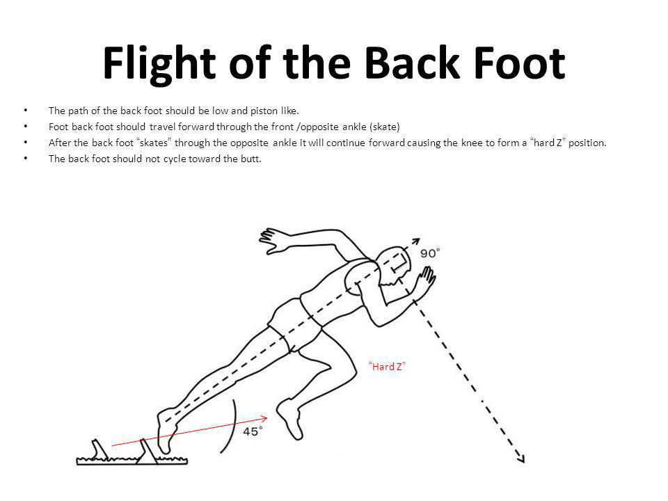 Flight of the Back Foot The path of the back foot should be low and piston like. Foot back foot should travel forward through the front /opposite ankl
