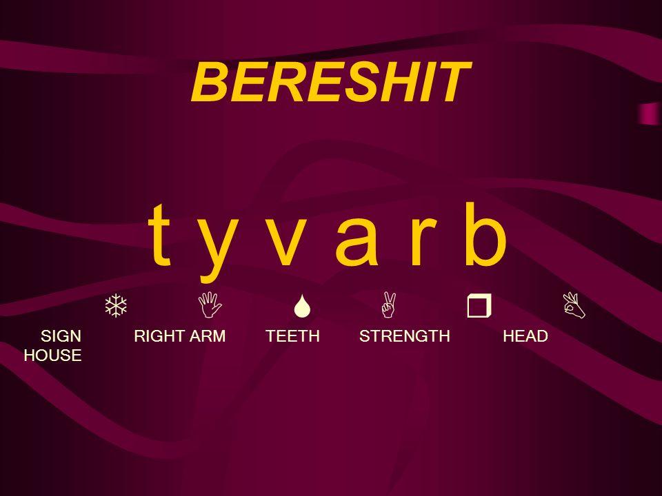 BERESHIT t y v a r b T I S A r B SIGN RIGHT ARM TEETH STRENGTH HEAD HOUSE
