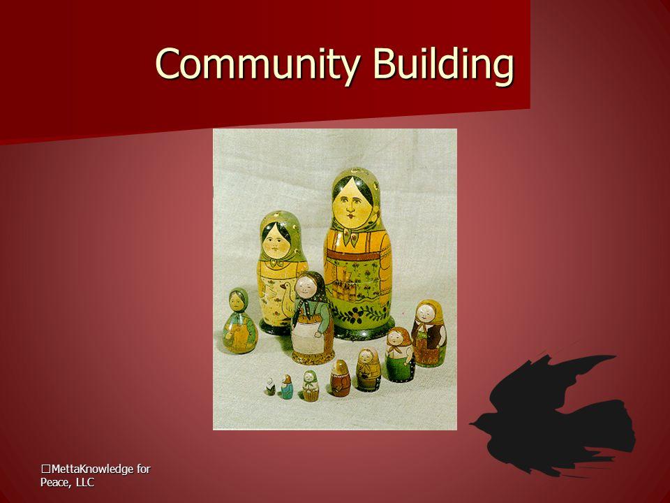MettaKnowledge for Peace, LLC Community Building