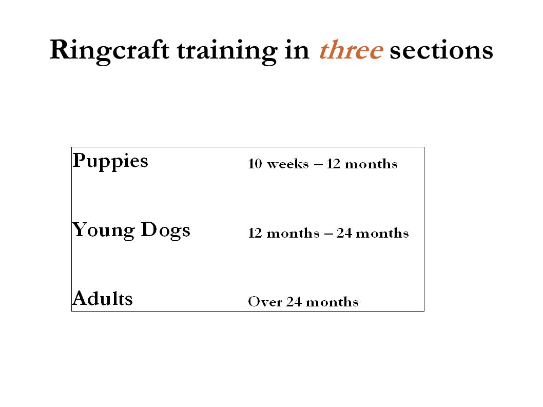 Ringcraft training in three sections