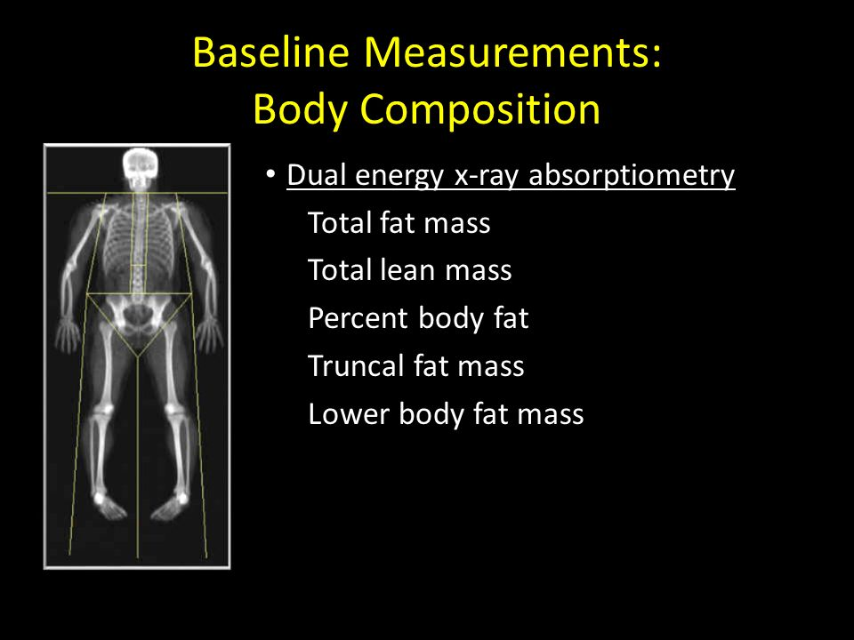 Baseline Measurements: Body Composition Dual energy x-ray absorptiometry Total fat mass Total lean mass Percent body fat Truncal fat mass Lower body f