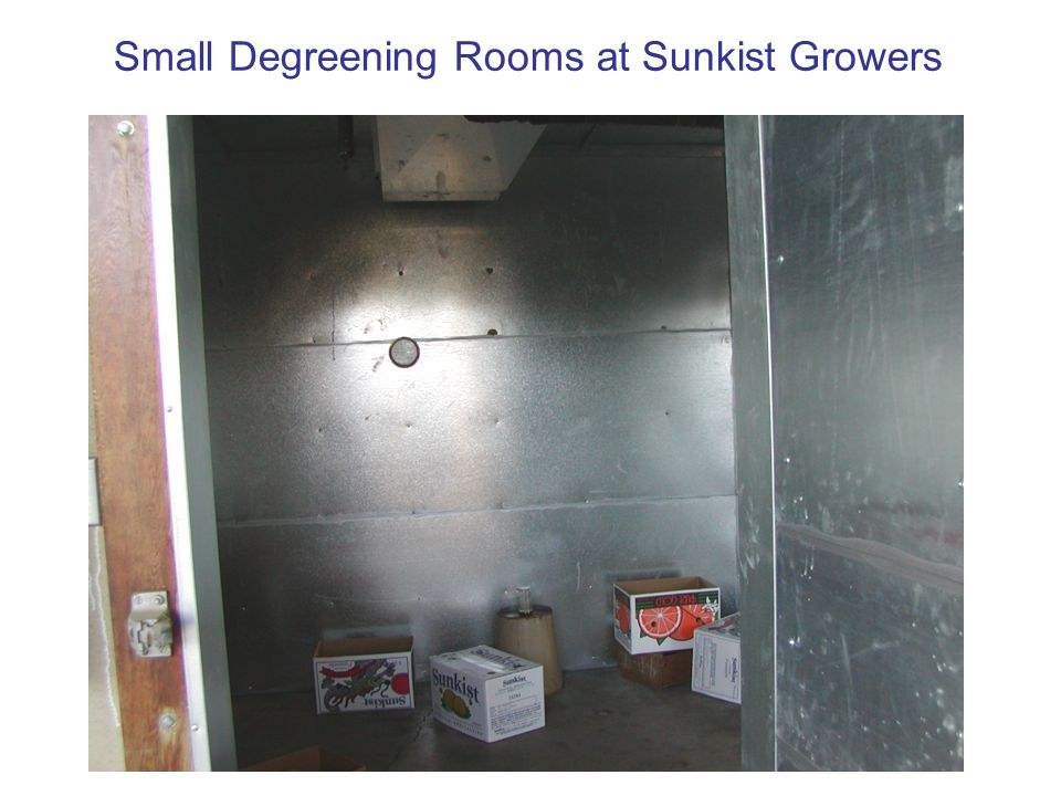 Small Degreening Rooms at Sunkist Growers