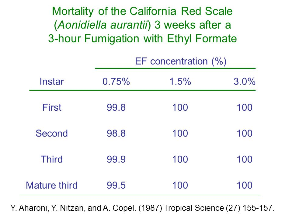 EF concentration (%) Instar0.75%1.5%3.0% First99.8100 Second98.8100 Third99.9100 Mature third99.5100 Mortality of the California Red Scale (Aonidiella aurantii) 3 weeks after a 3-hour Fumigation with Ethyl Formate Y.