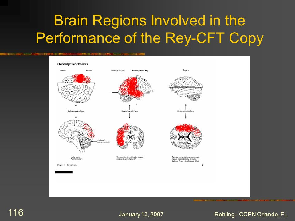 January 13, 2007Rohling - CCPN Orlando, FL 116 Brain Regions Involved in the Performance of the Rey-CFT Copy