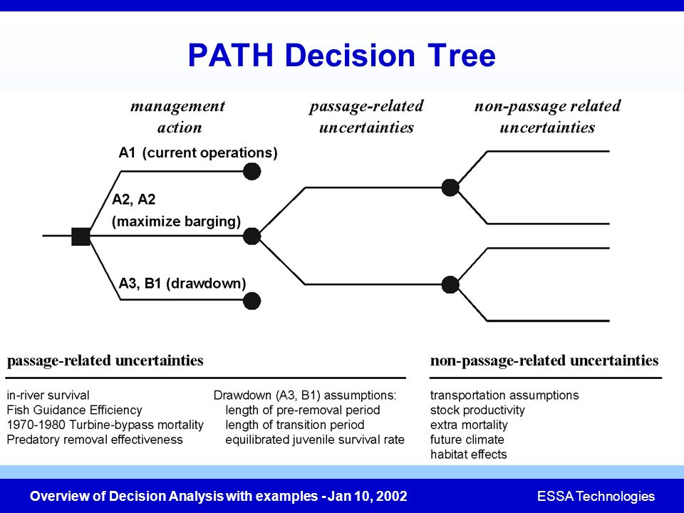 Overview of Decision Analysis with examples - Jan 10, 2002ESSA Technologies PATH Decision Tree