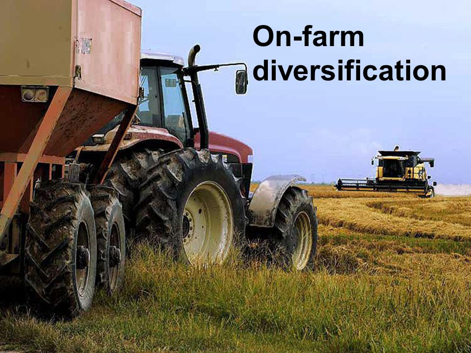 On-farm diversification