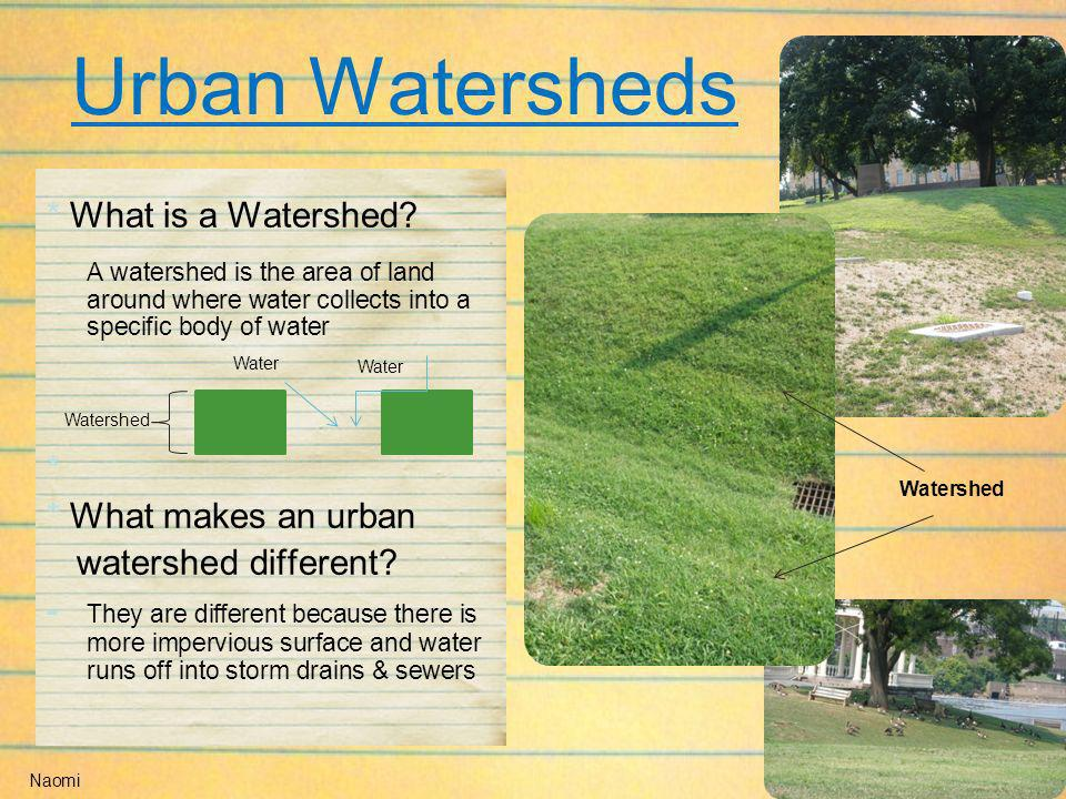 Urban Watersheds * What is a Watershed? A watershed is the area of land around where water collects into a specific body of water * * What makes an ur