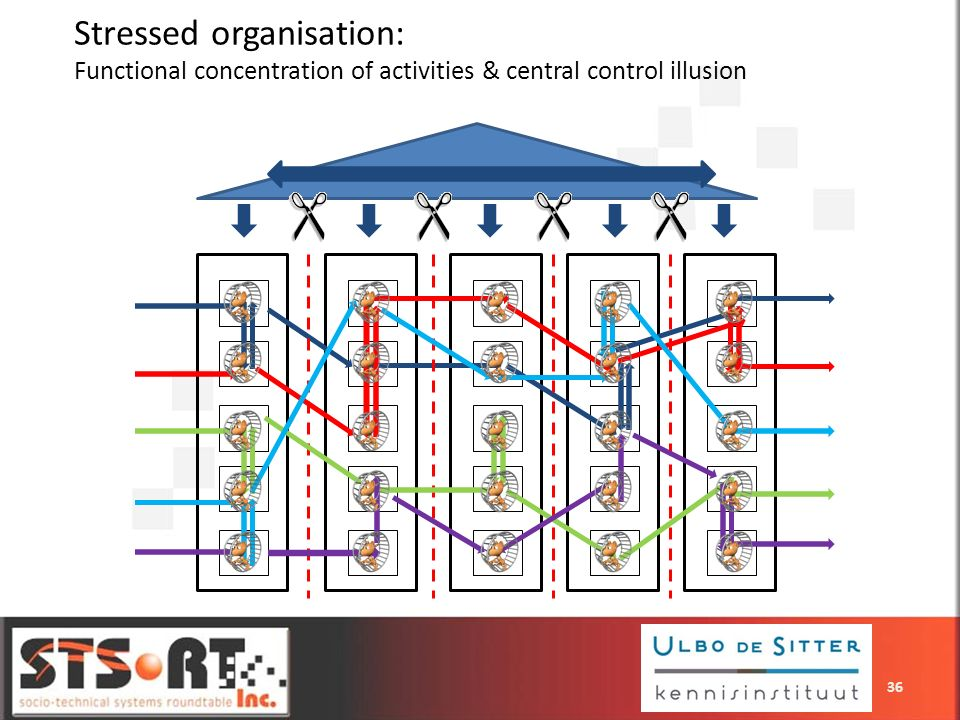Stressed organisation: Functional concentration of activities & central control illusion 36