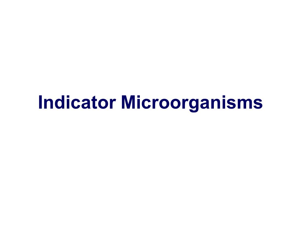 Indicator Microorganisms