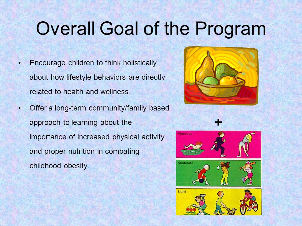 Overall Goal of the Program Encourage children to think holistically about how lifestyle behaviors are directly related to health and wellness. Offer