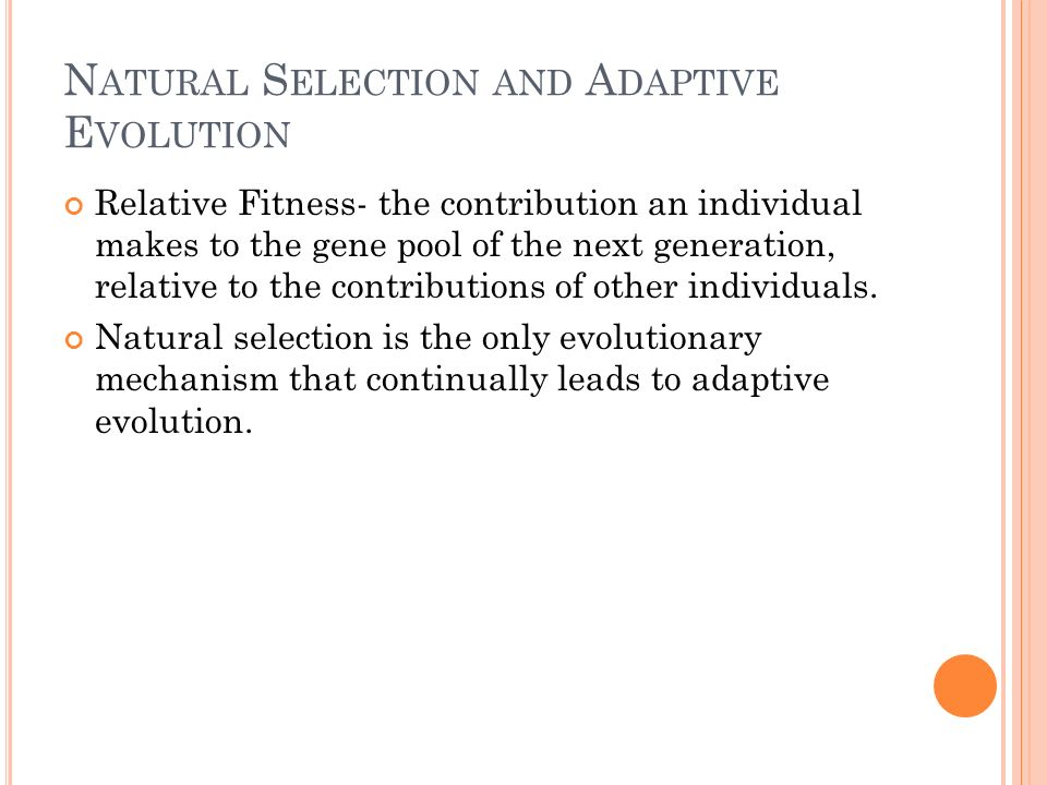N ATURAL S ELECTION AND A DAPTIVE E VOLUTION Relative Fitness- the contribution an individual makes to the gene pool of the next generation, relative