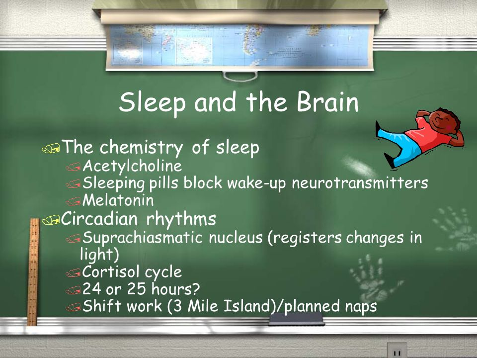 Sleep and the Brain / The chemistry of sleep / Acetylcholine / Sleeping pills block wake-up neurotransmitters / Melatonin / Circadian rhythms / Suprac