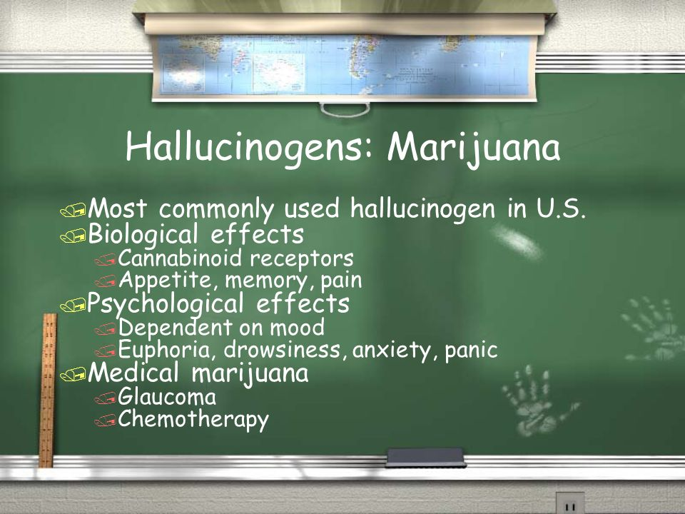 Hallucinogens: Marijuana / Most commonly used hallucinogen in U.S. / Biological effects / Cannabinoid receptors / Appetite, memory, pain / Psychologic