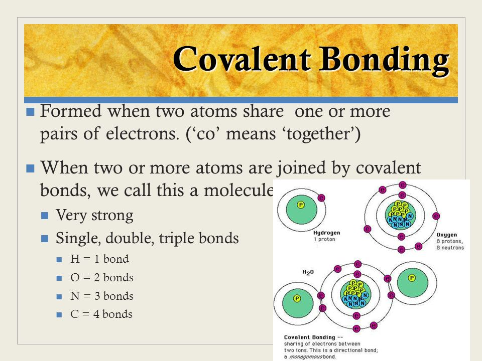 Formed when two atoms share one or more pairs of electrons. (co means together) When two or more atoms are joined by covalent bonds, we call this a mo