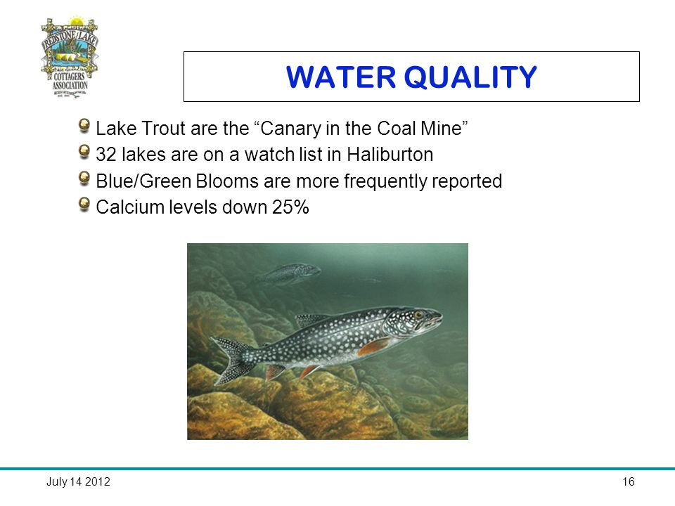 July 14 201216 WATER QUALITY Lake Trout are the Canary in the Coal Mine 32 lakes are on a watch list in Haliburton Blue/Green Blooms are more frequently reported Calcium levels down 25%