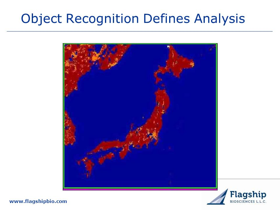 www.flagshipbio.com Object Recognition Defines Analysis