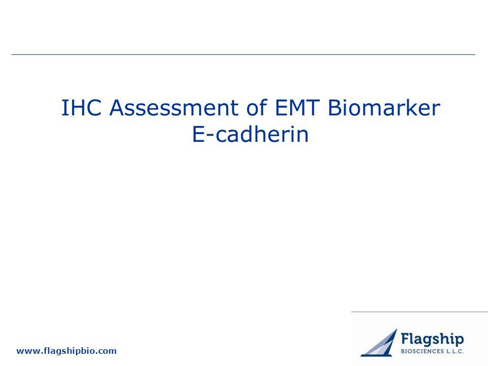 www.flagshipbio.com IHC Assessment of EMT Biomarker E-cadherin