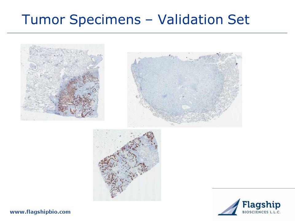 www.flagshipbio.com Tumor Specimens – Validation Set
