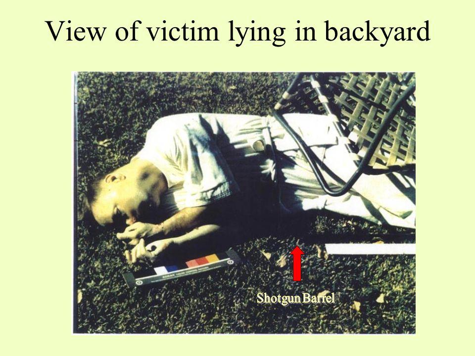 FACTS NIS CRIME SCENE REPORT: