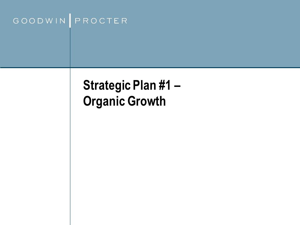 Strategic Plan #1 – Organic Growth