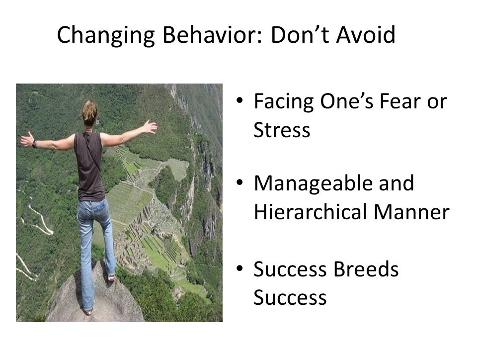 Changing Behavior: Dont Avoid Facing Ones Fear or Stress Manageable and Hierarchical Manner Success Breeds Success